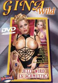 Gina Wild - Jetzt wird es schmutzig! Cover Bild