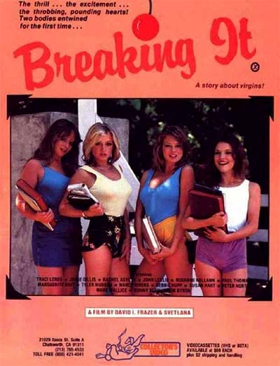 Breaking It – A Story about Virgins Cover