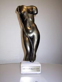 European X Award 2002