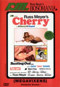 Cherry Harry Raquel Megavixens DVD Cover