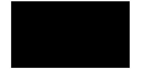 wXw Wrestling Logo Bild