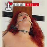 SM Privat Vol.1 DVD Review