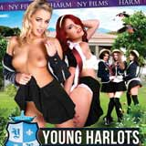 Young Harlots: School Report DVD Review